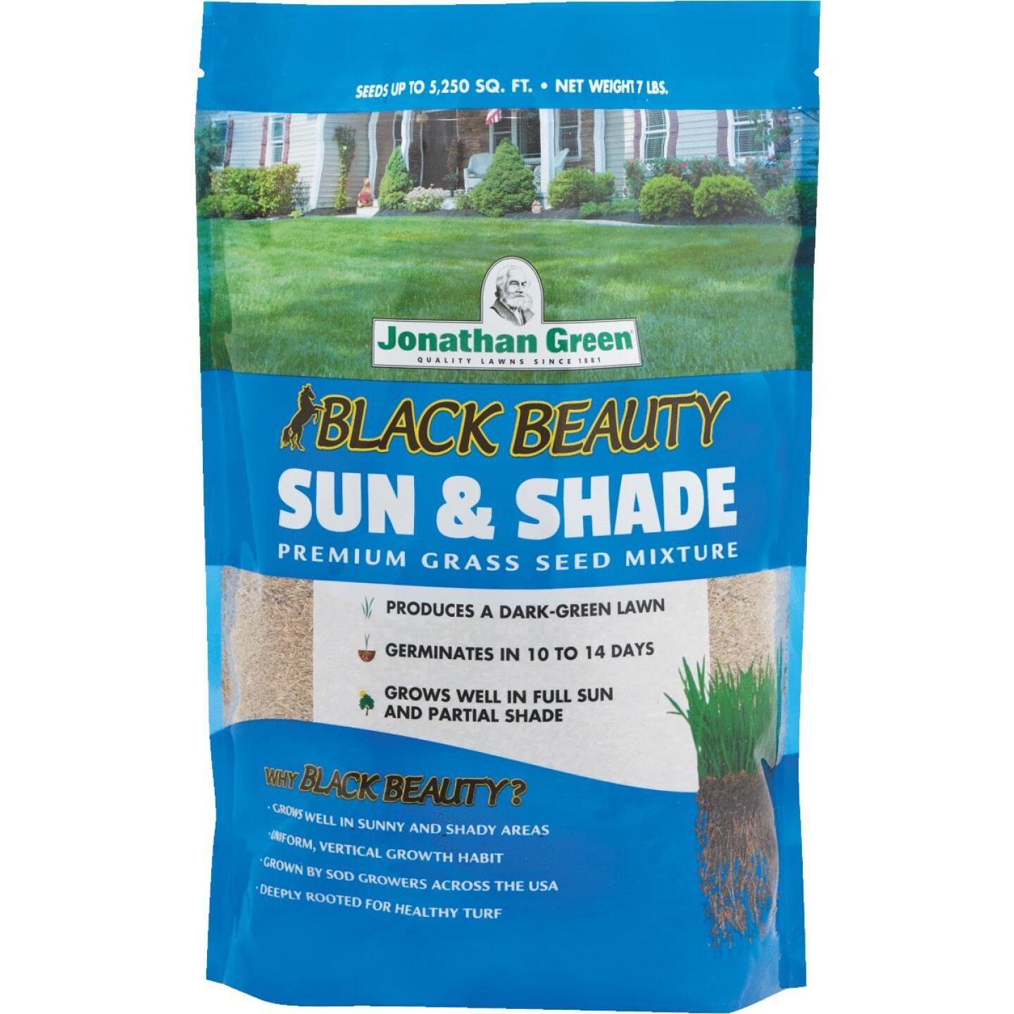 Jonathan Green Black Beauty 7 Lb. 2625 Sq. Ft. Coverage Sun & Shade Grass Seed Image 1