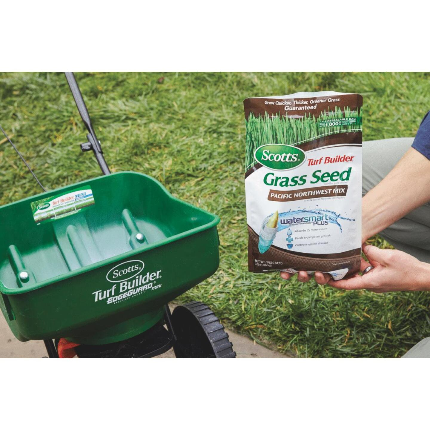 Scotts Turf Builder 3 Lb. Up To 1000 Sq. Ft. Coverage Pacific Northwest Grass Seed Image 2